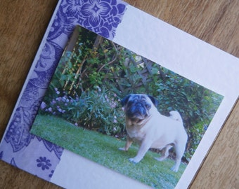 Pug card,for any occasion