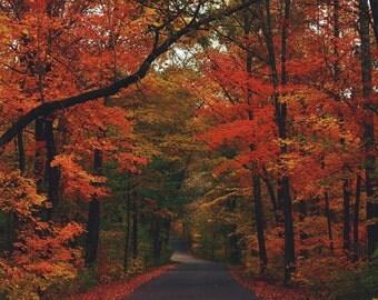 Fall in Minnesota Print