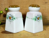 Vintage Hand Painted Floral Nippon Salt and Pepper Shakers