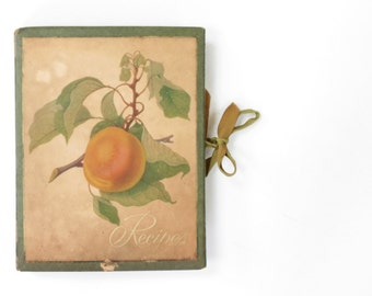 Vintage Recipe Binder with Recipes - Vintage Baking Recipes - Vintage Recipe Book - Vintage Kitchen - Antique Recipes and Folder
