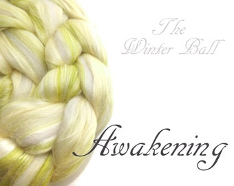 Blended tops - Blended roving - Spinning fibre - 100g - 3.50z - Green - Soya - Merino - Rose fibre - Milk -  AWAKENING