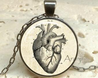 Victorian heart pendant, heart necklace, heart pendant, heart anatomy necklace, anatomical heart necklace, Victorian heart, Pendant #AN214GM