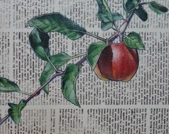Apple Branch Original Acrylic Painting