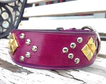 "1.5"" leather dog collar"