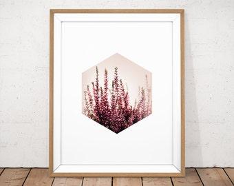 Flower Printable, Flower Photography, Printable Photography, Botanical Wall Art, Plants Wall Art, Pastel Pink Poster, Pink Photo Wall Art