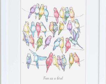 Bird Illustration, Nursery art, Room decor, wall art, new home print, gift for baby, bird drawing, print, parakeets, budgies, colourful art