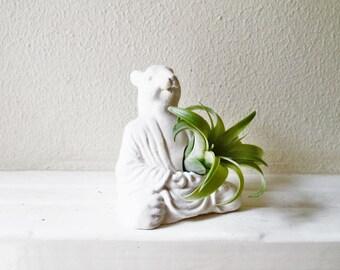 Meditating Buddha squirrel, Zen animal planter, Buddha planter, air plant holder,