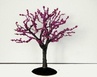 "Red Bud tree 6"""