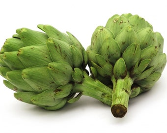Organic Artichoke Seeds ~Mycorrhizae Fortified/Bulk Available~