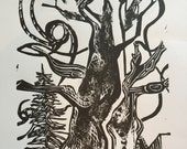 Bristlecone Pine - Black