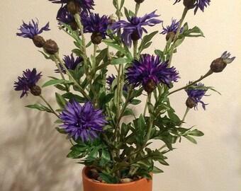 Potted Faux Persian Cornflower - Purple