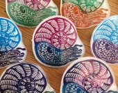 Swimming Ammonite badges