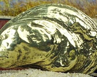Atlantic Oyster Buckle
