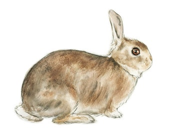 Alert // animals, pet, animal print, art print, neutral, black, wall art, travel, rabbit, bunny
