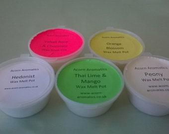Soy Wax Melt Pots in Designer-Style Fragrances, N-Z