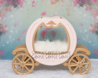 Digital Backdrop With Cinderella Carriage Prop & Floral Backdrop - Newborn Photography