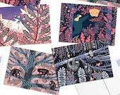 Pack of 8 Papio Press Jungle Postcards