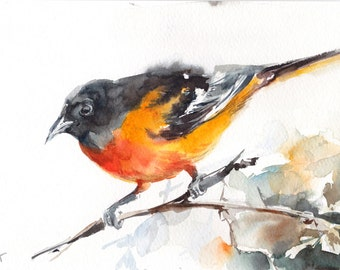 ORIGINAL Watercolor Painting, Baltimore Oriole Painting, Yellow Bird Watercolour