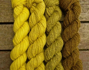 Hand dyed gradient yarn Shetland 4ply 'Bumblebee'