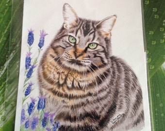 Tabby Cat Print, Fine Art Tabby Cat Print, Feline Cat Print, Cat Lover Art Print, Coloured Pencil Cat Print, mad about cats print.