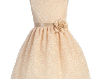 Sweet Lace Flower Girl Dress With Silk Flower Pin