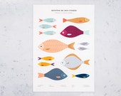 Print - A2 fish
