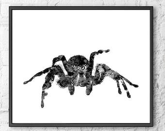 Spider print, spider art, insect art print, modern minimal print, white black print, spider illustration, spider poster - B4