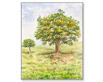 Apple Art Apple Painting Apple Tree Landscape Watercolor Red Apple Tree Art Apple Tree Painting Apple Orchard Landscape Art Fruit Tree Print