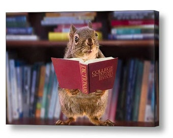Gifts for Readers, Student Gift, Book Art, Gift for Teacher, Library Decor, Librarian Gift, Squirrel Gift, Funny Animal, Wrapped Canvas Art
