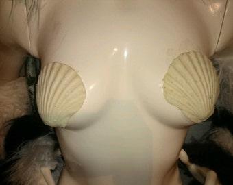 Sea shell nipple covers latex prosthetics