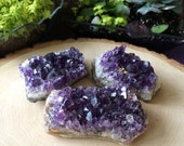 Amethyst Crystal Cluster/ small
