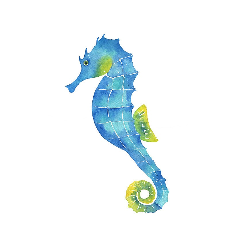 watercolor seahorse clipart painting print hand painted seahorse clip art black and white sea horse clipart outline