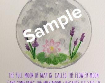 May's Full Moon pdf