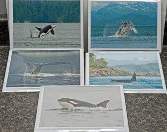Whales - 5 Pack of 5x7 Art Cards