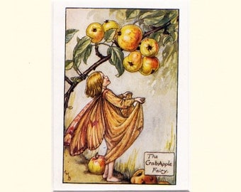 C M Barker original vintage print of the autumn Crabapple Fairy, mounted ready to fit into a standard frame of your choice.