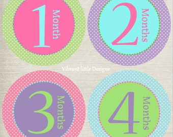 Baby Girl Monthly Stickers, Milestone Stickers, Month Stickers, Baby Month Stickers, Baby Stickers #55