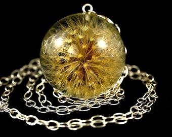 Real Dandelion Pendant, Natural Dandelion Necklace, Leontodon hispidus, Dandelion Resin Jewelry, Christmas Gift. Sphere 3.4 cm. Chain 80 cm.