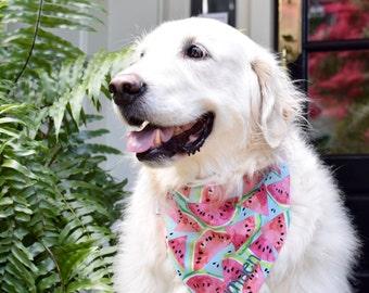 Watermelon Dog Bandana || Reversible Classic Tie PupDana || Ready to Ship || Aqua Polka Dot || Personalized Puppy Gift || Three Spoiled Dogs