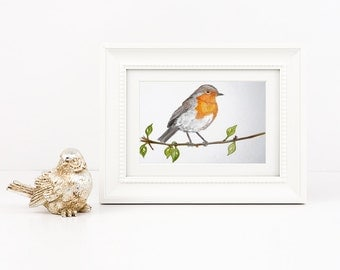 Robin - Irish Wildlife Collection, Giclee Print