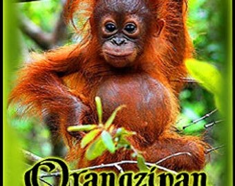 Orangzipan - Perfume Oil for Women - Love Potion Magickal Perfumerie
