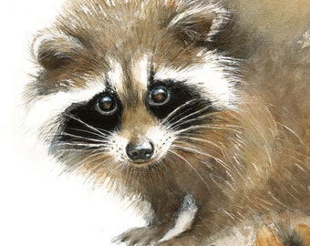 Raccoon watercolor - Baby Raccoon Painting - Art Print - Home Wall Decor - Raccoon  Watercolor Illustration - Woodland animals