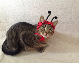 Ladybug Hat For Cats