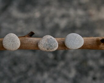 Men's Stud Earrings - Gift for Boyfriend - Gray Beach Stone - Minimalist - Mix and Match - Sea Pebble