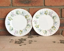 Minton 1970s Spring Valley fine bone china entree side plates