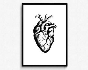Heart Anatomy Print - Anatomical Heart Art - Geek Love Anatomy Wall Art, Science Valentine Poster, Medical student gift,Valentines Day Decor