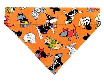 Halloween Dog Bandana Scarf - Canine Costume Parade