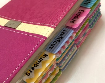 """King James Version (KJV) Pocket Sized Compact Reference Bible in Raspberry Pink and Cream with """"I Heart Rainbow Stripes"""" Bible Tabs Added"""