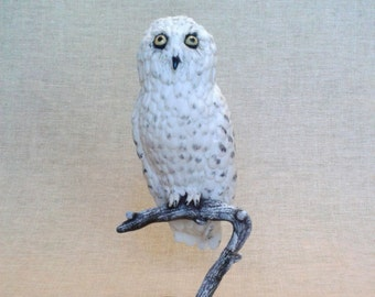 Owl Hedwig from Harry Potter