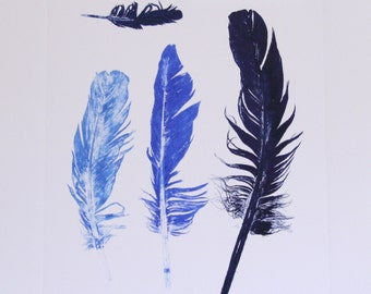 Untitled (four feather print in shades of blue ink)