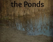 Poseidon of the Ponds (the Poseidon Liturgical Year vol. 2)